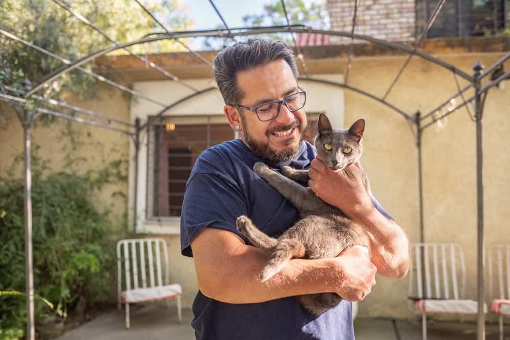 Kako dresirati mačku